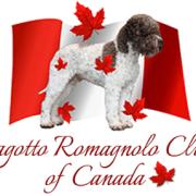 Lagotto Romagnolo Club of Canada launch